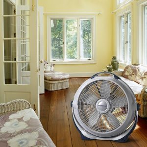 Lasko 3300 2Wind Machine Fan