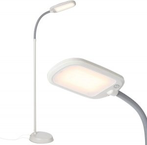 Brightech Energy Saving 12 Watts LED Floor Lamp for Reading