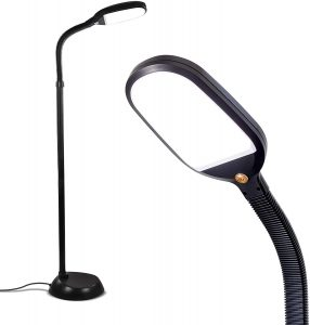 Brightech Natural Daylight Bright LED Floor Lamp for Reading