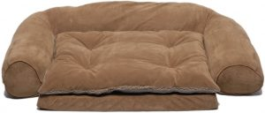CPC Ortho Sleeper Comfort Couch