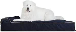 Furhaven Pet Dog Couch