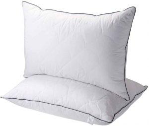 Sable Down Pillows