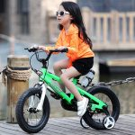 Top 10 Best Cheap Bikes for Kids in 2019 Reviews & Buyer's Guide