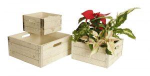 Wald Imports Set of 3 Whitewash Decorative Wood Crates