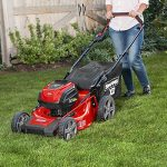Best Electric Lawn Mowers in 2019 Reviews