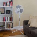 Comfort Zone Pedestal CZST161BTE Fan