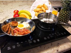 Evergreen Home 1800 W Double Digital Induction Cooktop