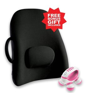 Obus Forme Ergonomic Wheelchair Cushion Backrest Support