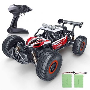 SPESXFUN RC High-Speed Remote Control Car