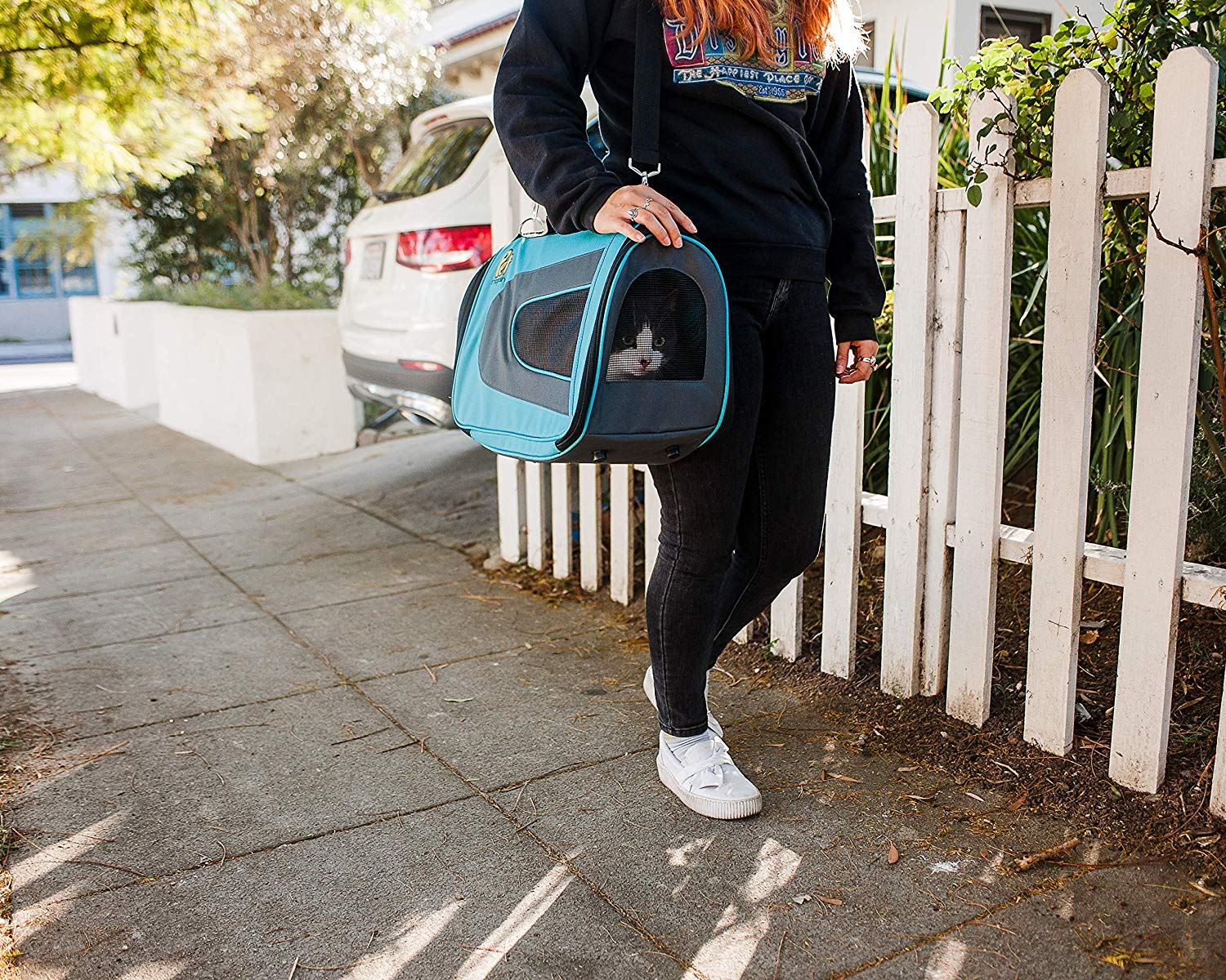 Top 10 Best Cat Carriers for Small Cats under 25 in 2020 Reviews