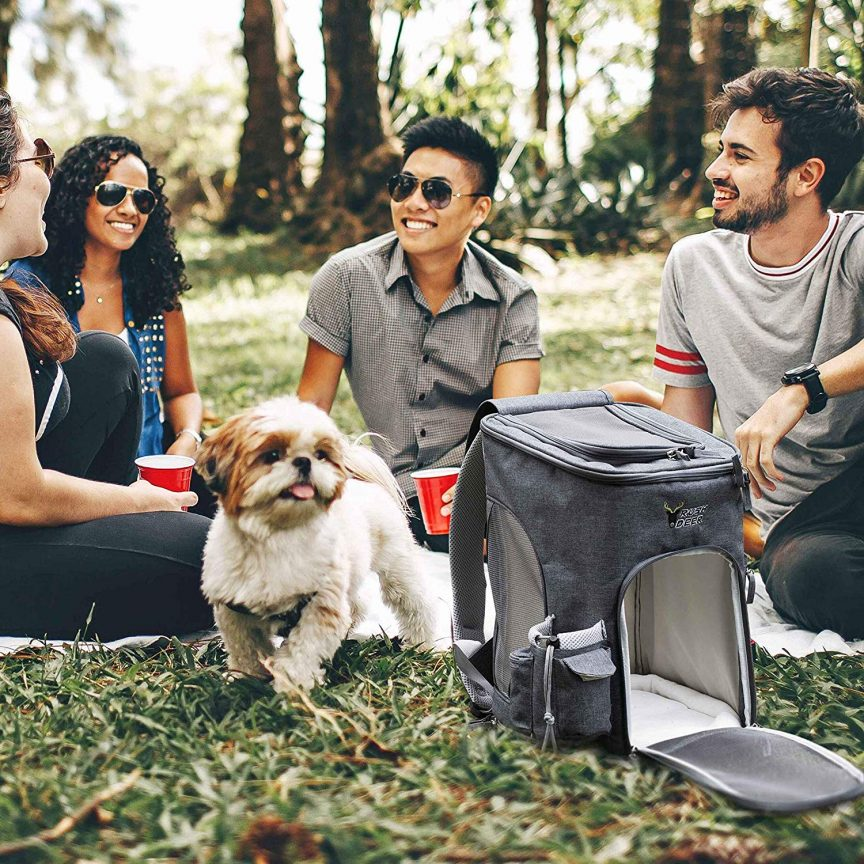 Backpack Dog Carriers
