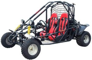 Kandi Smart 150cc 2 Seat Gokart