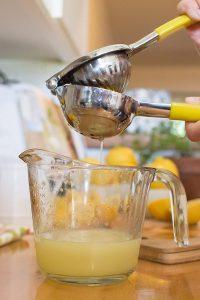 Lemon8tor 18/10 Stainless-Steel Hand-Held Lemon Squeezer