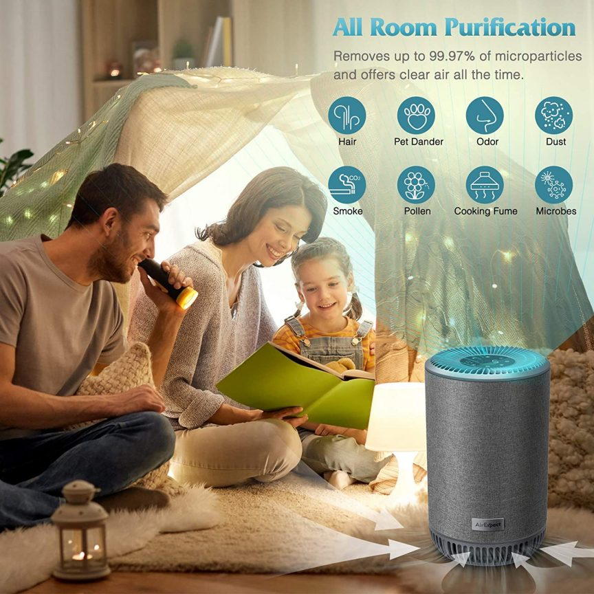 Air Ionizer Purifier for Home