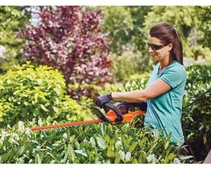 BLACK+DECKER 40V Cordless Hedge Trimmer (LHT341FF)