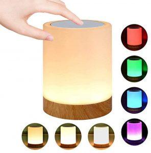 ROYFACC Night Light Touch Sensor Lamp